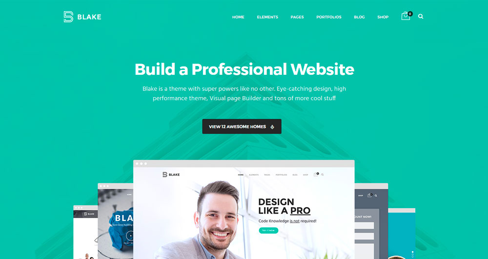 Blake---High-Grade-MultiPurpose-WordPress-Theme