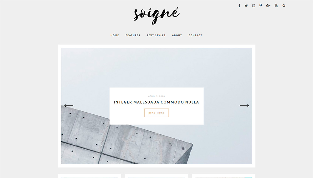 Soigne---A-Minimal-WordPress-Blog-Theme